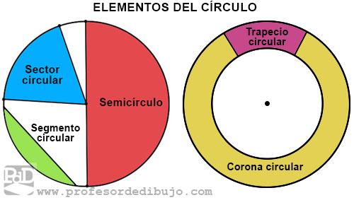 Elementos del círculo: semicírculo, sector circular, segmento circular, corona circular y trapecio circular.